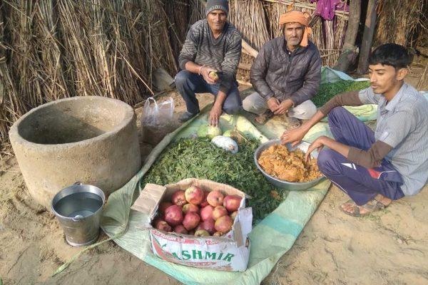 Natural Fertilizer Chyawanprash for Improving Soil's Health