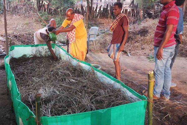 Eco-friendly Vermi beds Regenerate Soil